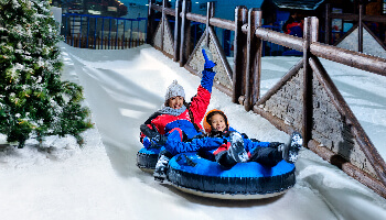 Hold Tight For Our Amazing Bobsled Runs!